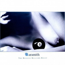 Постер бильярдный Aramith Lady 102х70см